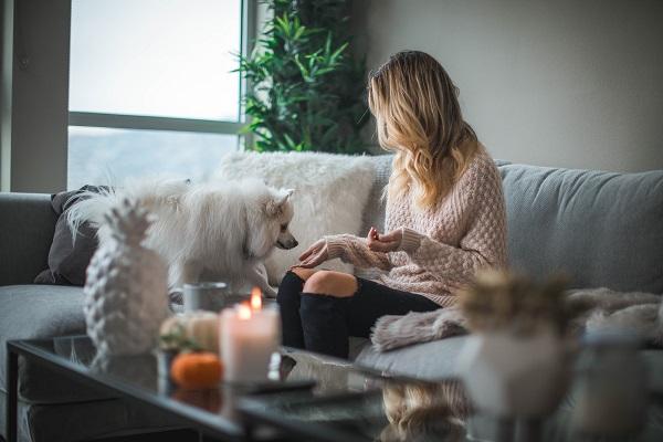 7 formas inteligentes de cuidar a tus mascotas
